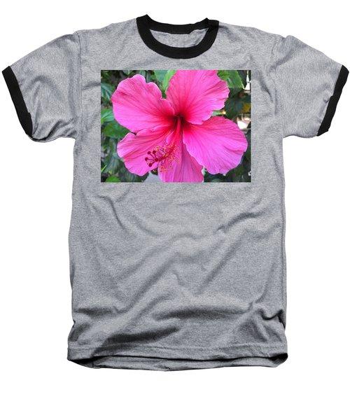 Hot Pink Hibiscus  Baseball T-Shirt