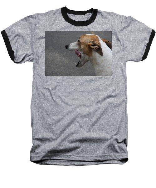 Hound Portrait Baseball T-Shirt
