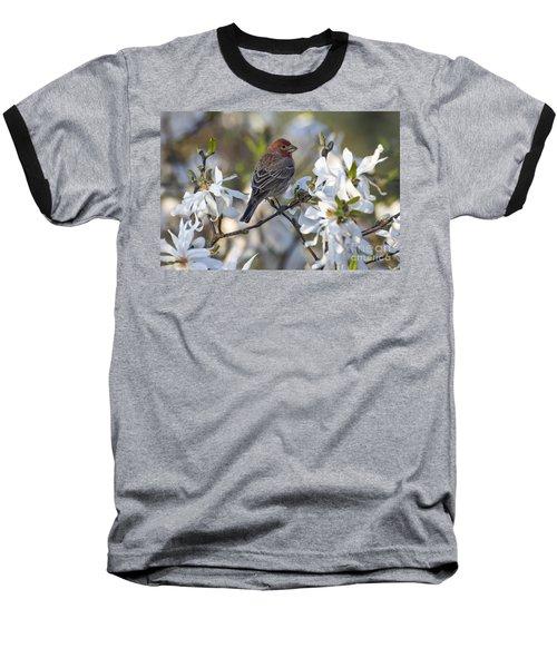 Baseball T-Shirt featuring the photograph House Finch - D009905 by Daniel Dempster