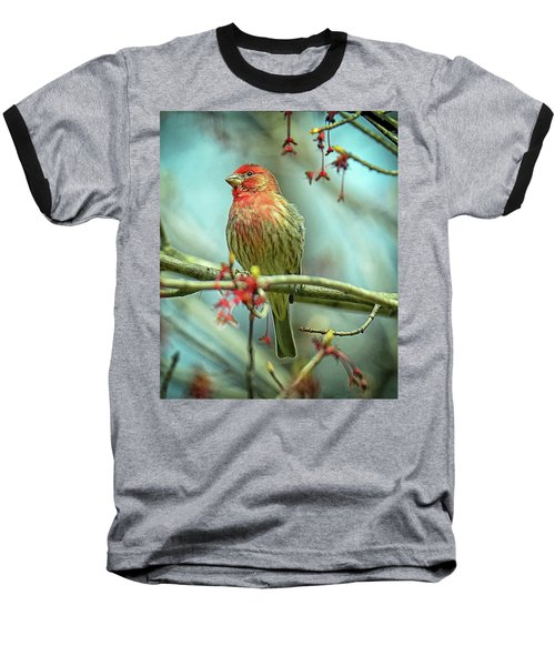 Baseball T-Shirt featuring the photograph House Finch In Spring by Rodney Campbell