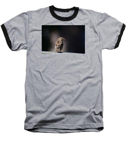 House Sparrow Baseball T-Shirt by Kathy Eickenberg
