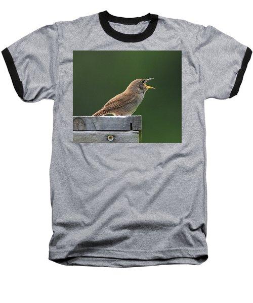 House Wren Stony Brook New York Baseball T-Shirt