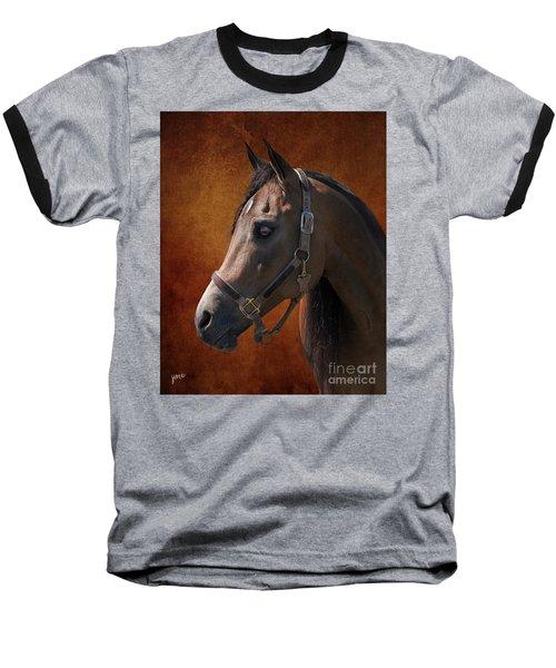 Houston Baseball T-Shirt