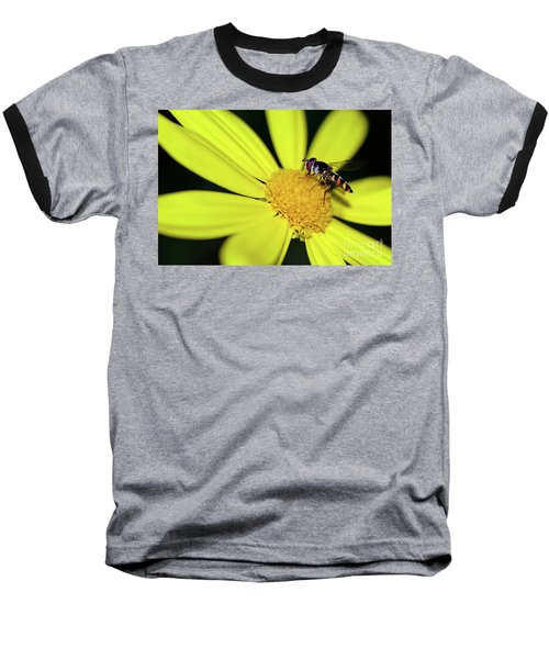 Baseball T-Shirt featuring the photograph Hoverfly On Bright Yellow Daisy By Kaye Menner by Kaye Menner