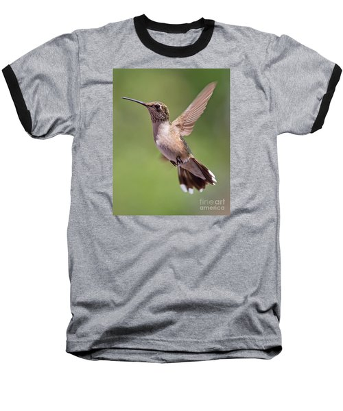 Hovering Hummer 1 Baseball T-Shirt