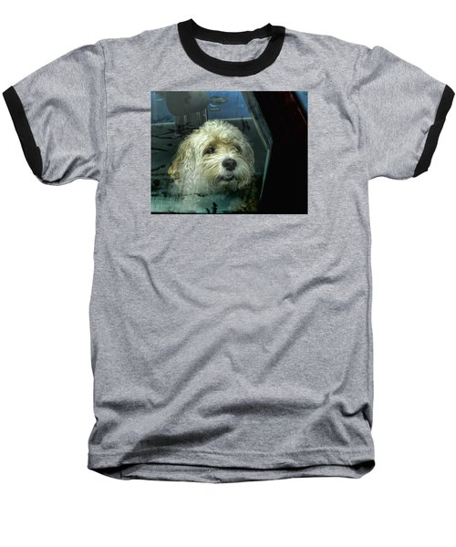 How Much Is That Doggie In The Window Baseball T-Shirt