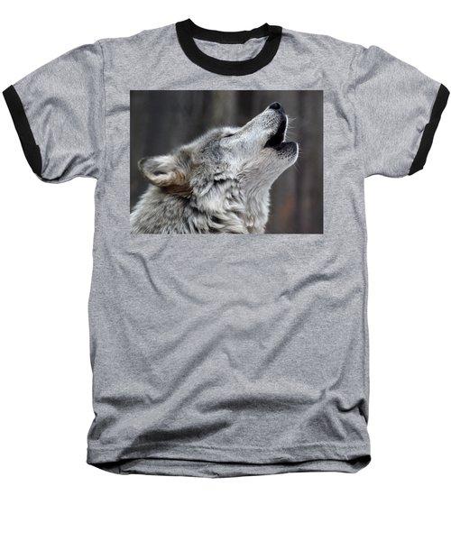 Howl Baseball T-Shirt by Richard Bryce and Family
