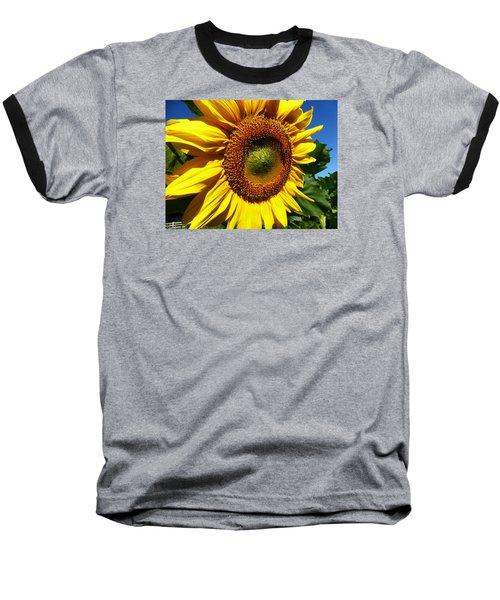 Huge Bright Yellow Sunflower Baseball T-Shirt by Tina M Wenger
