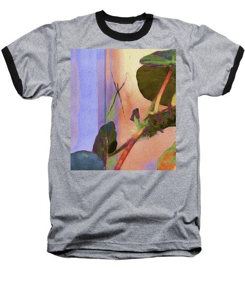 Giant Orb Spider Baseball T-Shirt