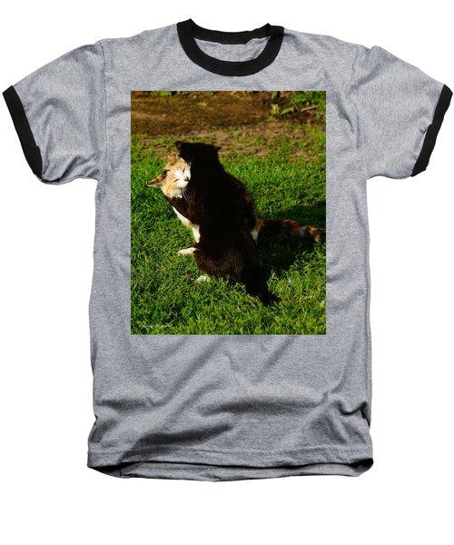 Hugs 2 Baseball T-Shirt by Steven Clipperton
