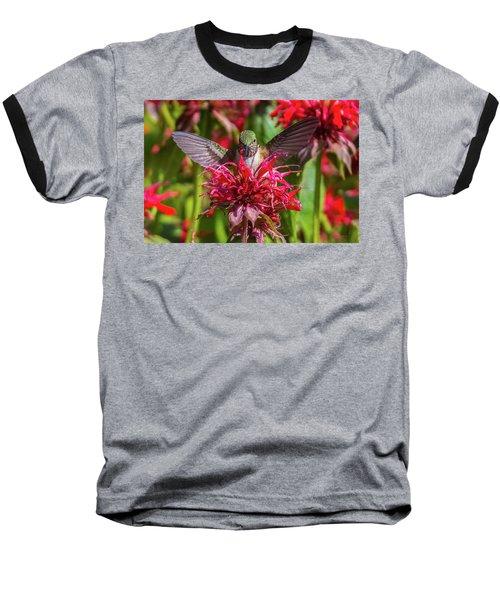Hummingbird At Eagles Nest Baseball T-Shirt