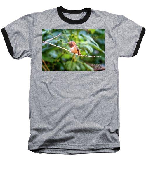 Humming Bird On Stick Baseball T-Shirt