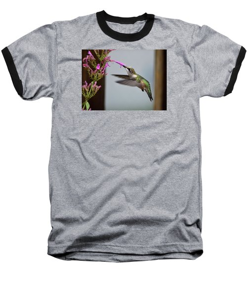 Hummingbird And Agastache Baseball T-Shirt