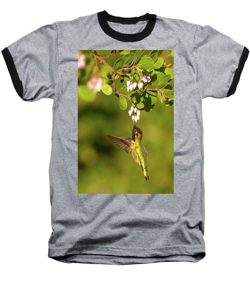Hummingbird And Manzanita Blossom Baseball T-Shirt