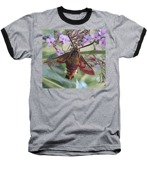 Baseball T-Shirt featuring the photograph Hummingbird Butterfly by Jeepee Aero
