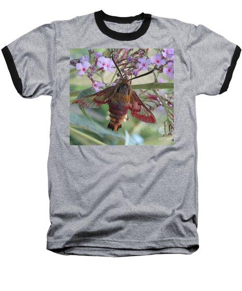 Hummingbird Butterfly Baseball T-Shirt by Jeepee Aero