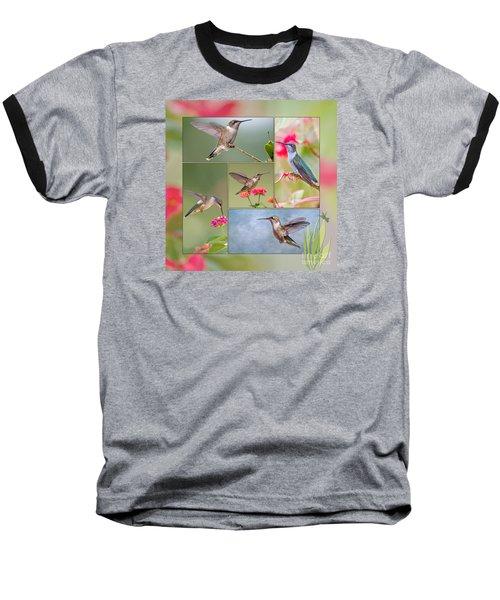 Hummingbird Collage Baseball T-Shirt by Bonnie Barry
