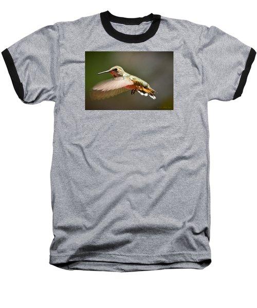 Hummingbird Facing Left Baseball T-Shirt by Albert Seger