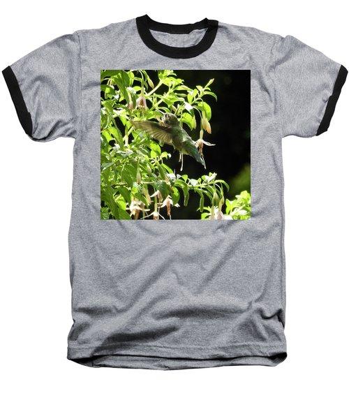 Hummingbird Feeding Baseball T-Shirt by Brian Chase
