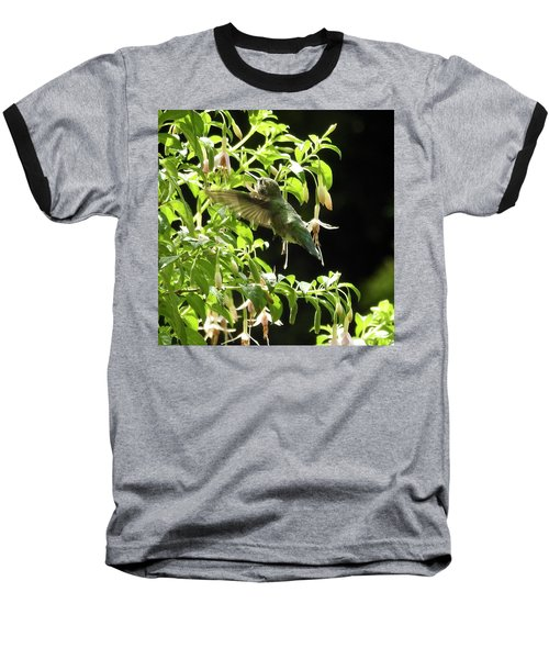 Hummingbird Feeding Baseball T-Shirt