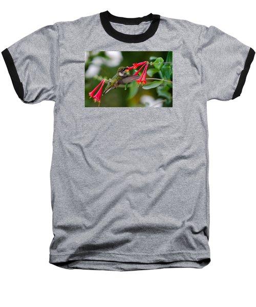 Baseball T-Shirt featuring the photograph Hummingbird Feeding by Gary Wightman