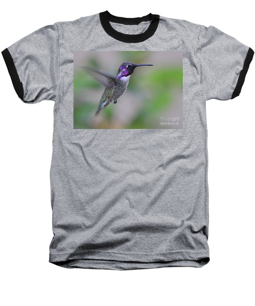 Hummingbird Flight Baseball T-Shirt