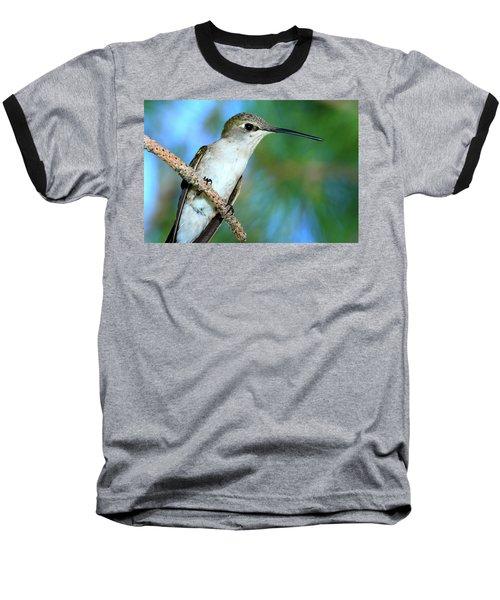 Hummingbird I Baseball T-Shirt by Paul Marto