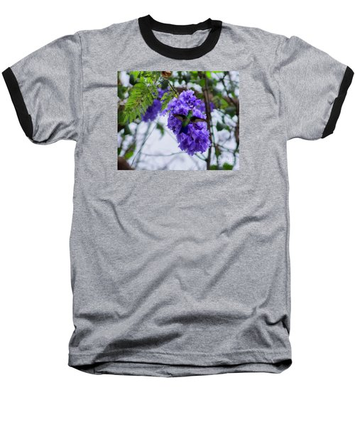 Hummingbird In A Jacaranda Tree Baseball T-Shirt by John  Kolenberg