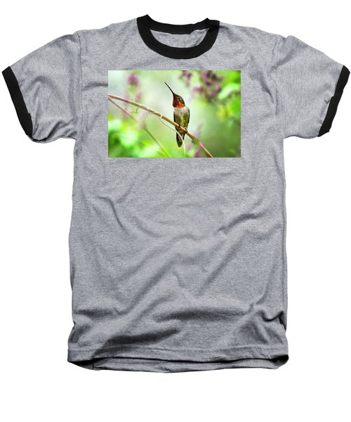 Hummingbird Looking For Love Baseball T-Shirt