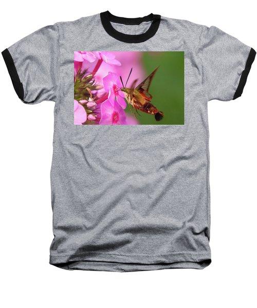 Hummingbird Moth Feeding 1 Baseball T-Shirt