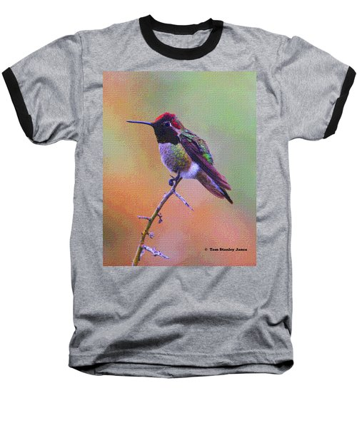 Hummingbird On A Stick Baseball T-Shirt
