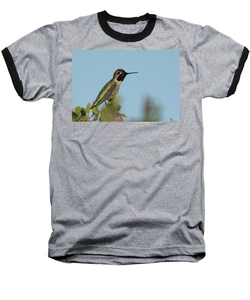 Hummingbird On Watch Baseball T-Shirt