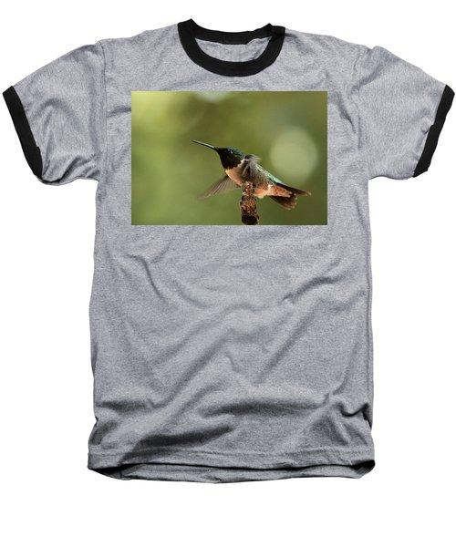 Hummingbird Take-off Baseball T-Shirt by Sheila Brown