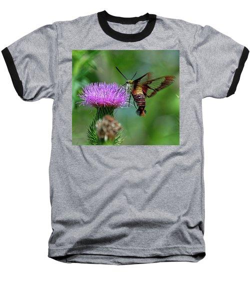 Hummingbirdbird Moth Dining Baseball T-Shirt