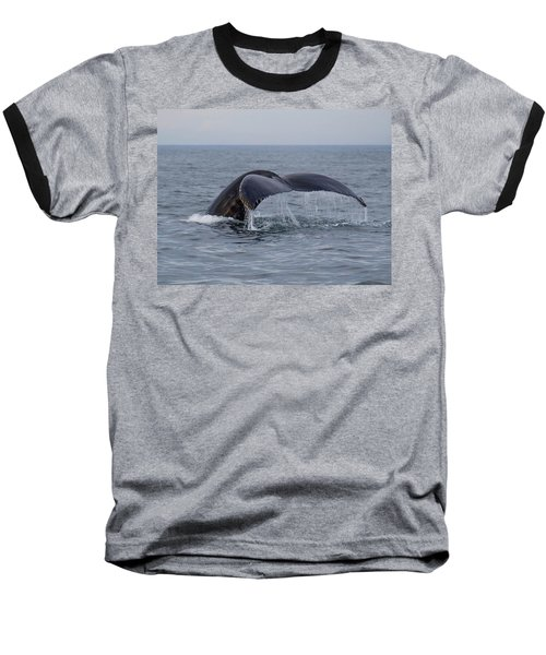 Baseball T-Shirt featuring the photograph Humpback Whale by Trace Kittrell