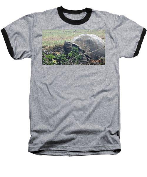 Hunger Giant Baseball T-Shirt by Will Burlingham