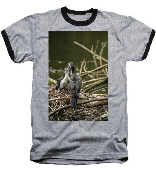 Hungry Pied Shag Chicks Baseball T-Shirt