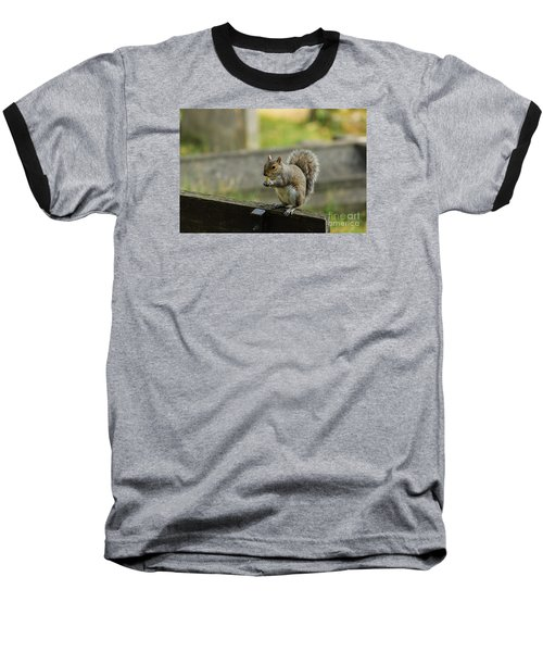 Hungry Squirrel Baseball T-Shirt