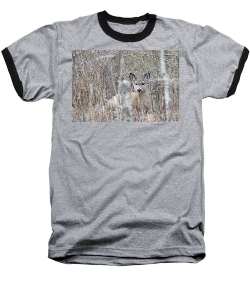 Hunkered Down Baseball T-Shirt by Brook Burling