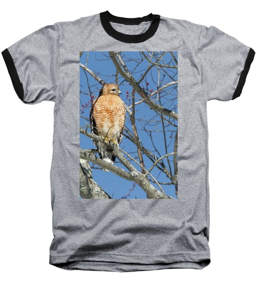 Baseball T-Shirt featuring the photograph Hunting by Bill Wakeley