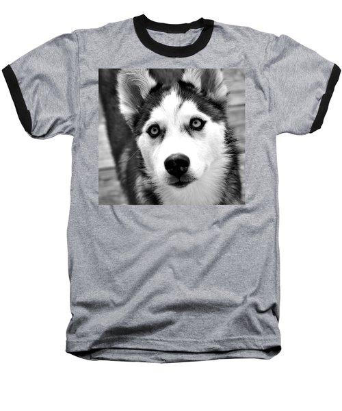 Husky Pup Baseball T-Shirt