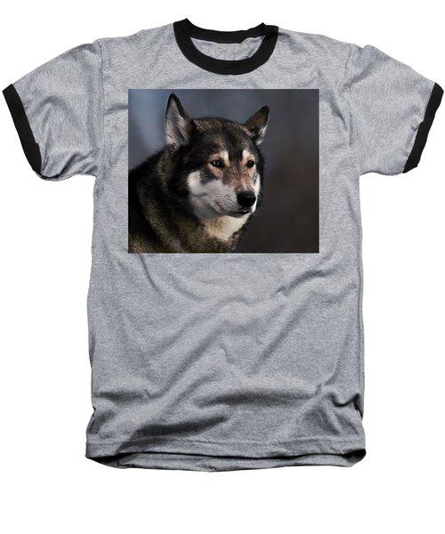 Husky Baseball T-Shirt