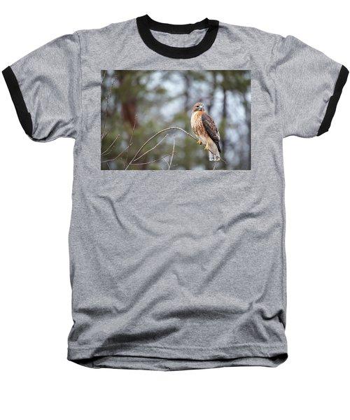 Hybrid Branch Baseball T-Shirt