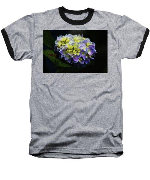 Hydrangea 3705 H_2 Baseball T-Shirt