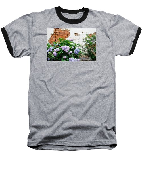 Hydrangea And Bricks Baseball T-Shirt by Menachem Ganon