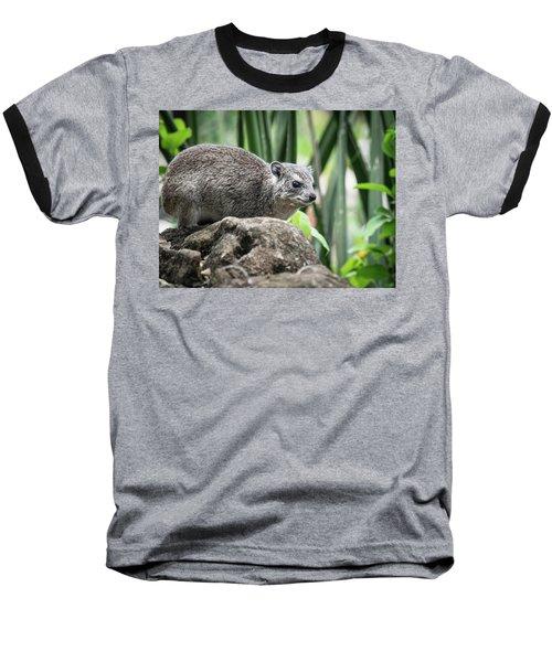 Hyrax Baseball T-Shirt