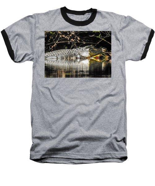 I Got It Made In The Shade Baseball T-Shirt