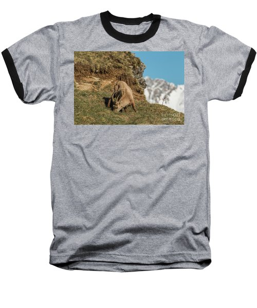 Ibex On The Mountains Baseball T-Shirt