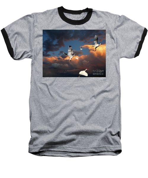 Ibis In Flight Baseball T-Shirt