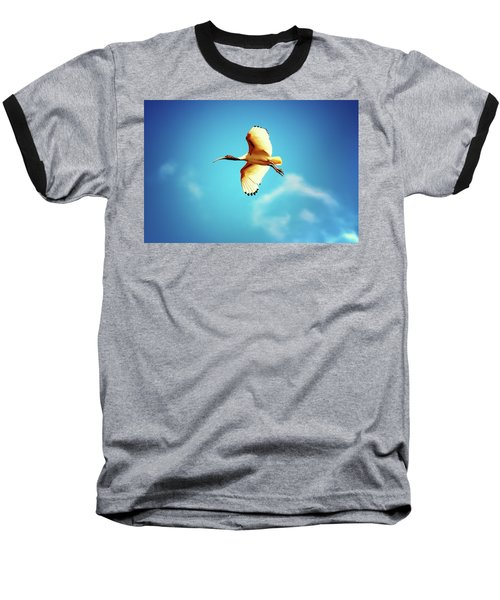 Ibis Of Light Baseball T-Shirt